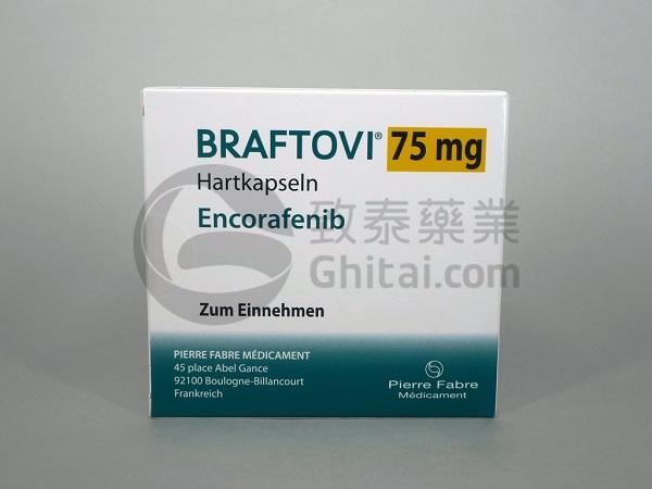 BRAFTOVI-ENG-1