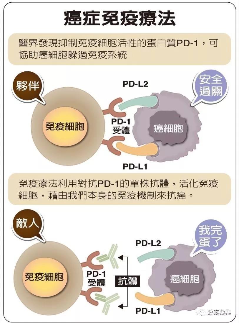 皮肤癌免疫疗法
