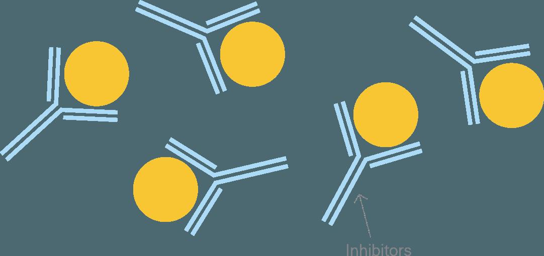 对于某些血友病患者,这些抗体将因素治疗视为异物并对其进行攻击,从而使其停止工作。 这些抗体称为抑制剂